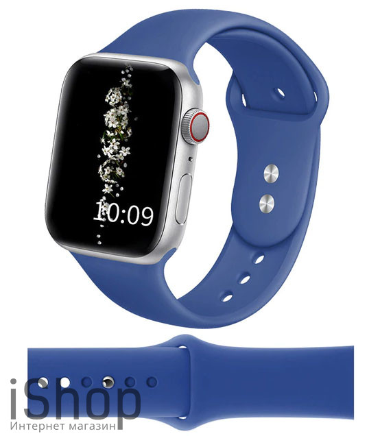watchband1