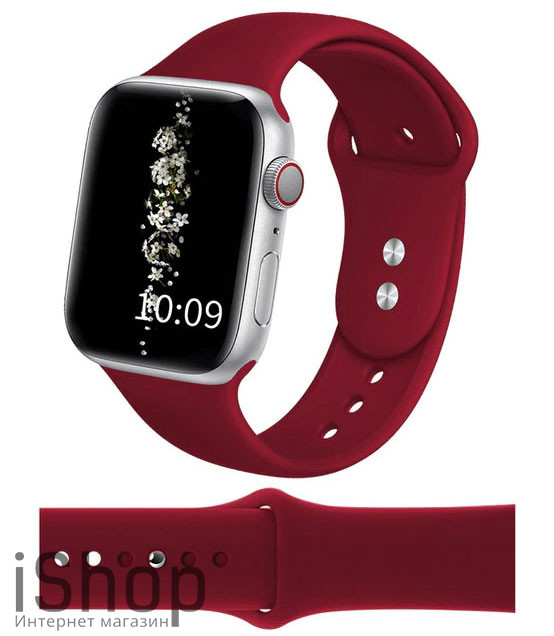watchband15