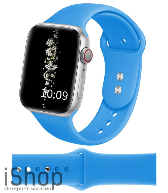 watchband5