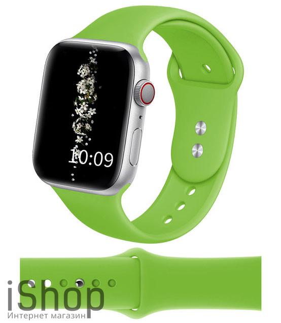watchband6