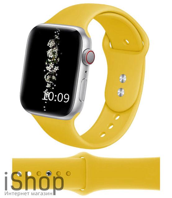 watchband9